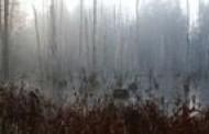 """Medininkų pilyje – menininko Virgilijaus Bizausko fotografijų paroda iš ciklo """"Pasivaikščiojimai"""""""