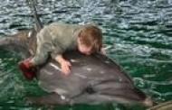 Jūrų muziejuje – tarptautinė konferencija apie gyvūnų terapiją