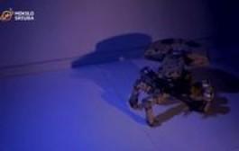 """""""Mokslo sriuba"""": lietuvis filme matytą robotą pavertė realybe"""