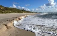 Palanga vėl sukvies Lietuvos vaikus pirmą kartą išvysti jūrą