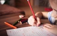 Pedagogų ir vaiko teisių gynėjų siekis – bendradarbiaujant spręsti vaiko teisių pažeidimus