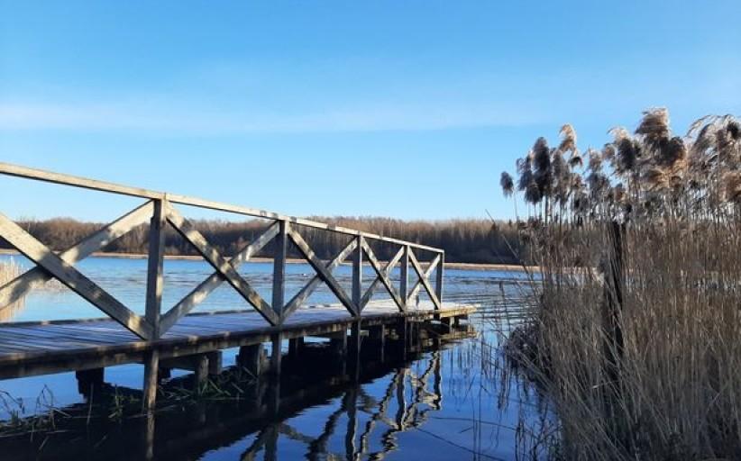 """Į žygį aplink Šiaulių ežerus kviečianti gidė: """"Šiauliai kūrėsi liūnų ir šlapynių apsuptyje"""