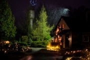 Gruodį šilumą ir jaukumą Botanikos sode kurs žiemojantys augalai, kurių grožį pabrėš šimtai lempučių ir žvakių liepsnelių