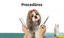 proceduros3